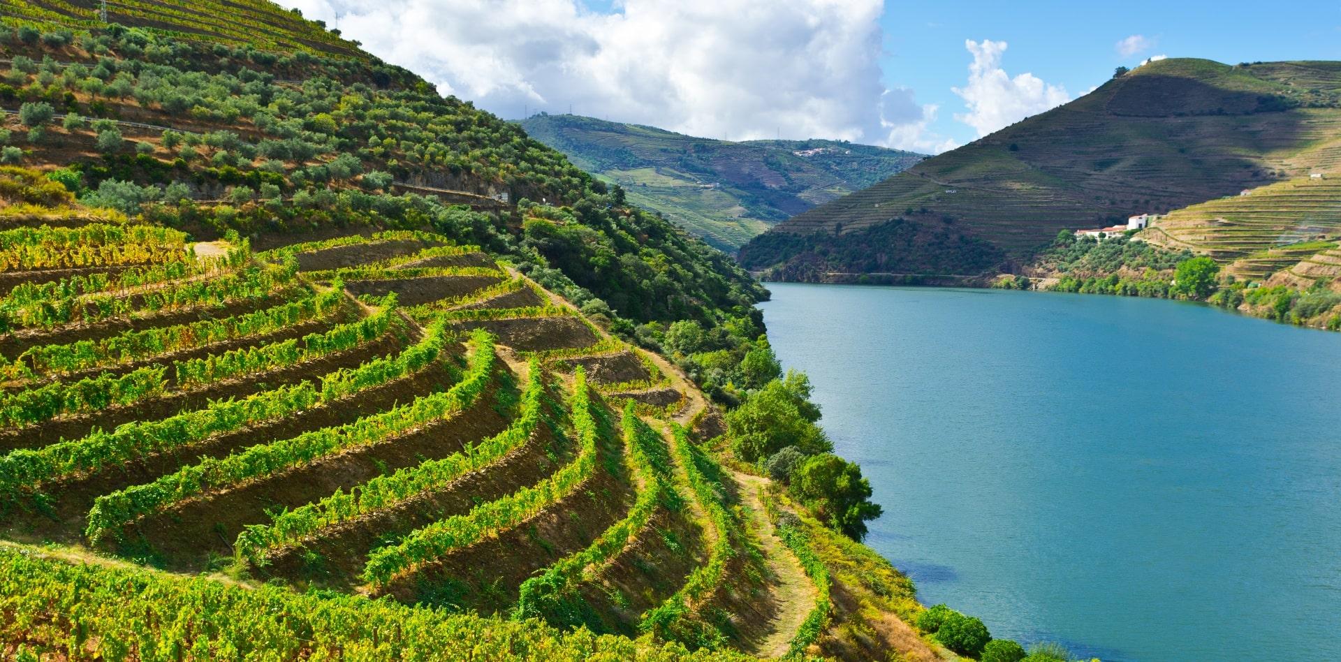 Private tour to Lisbon, Porto & Douro