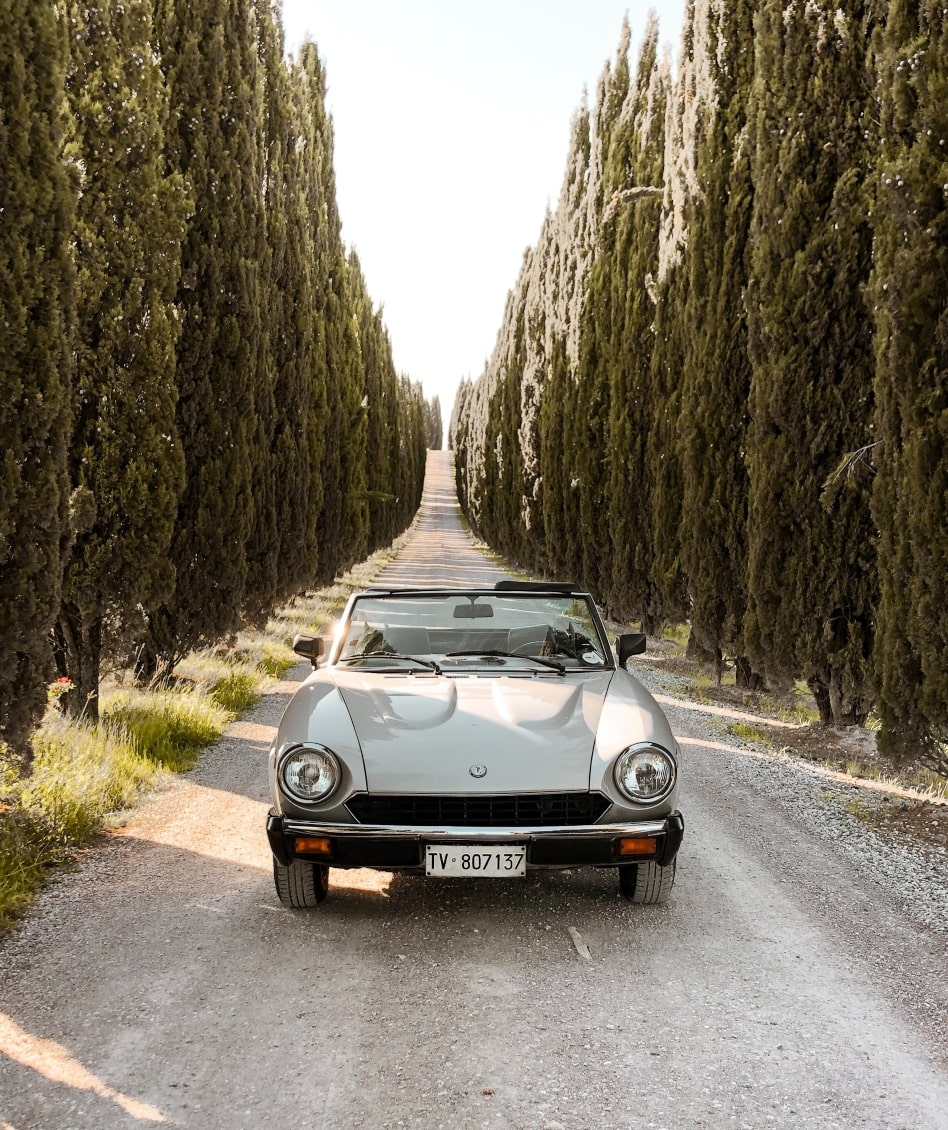 Journey by car highlights