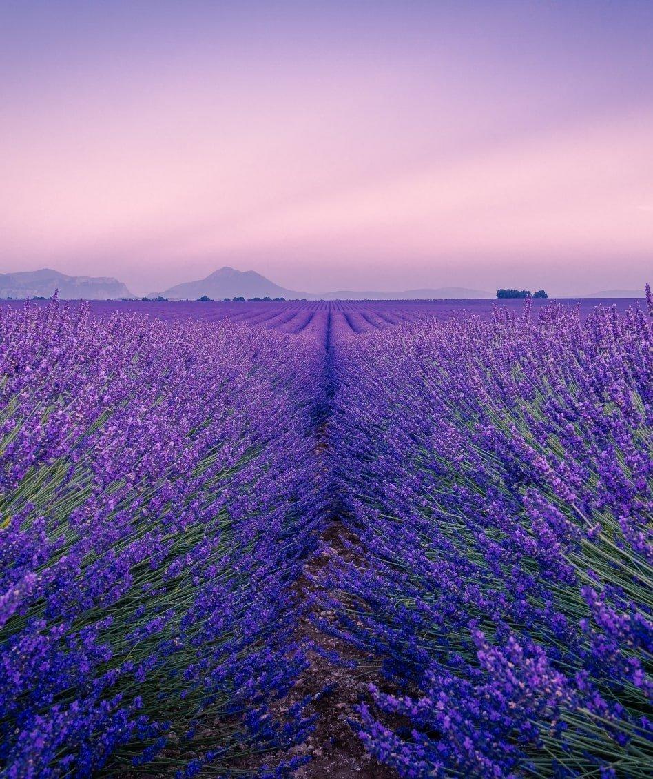 Landmarks of Provence