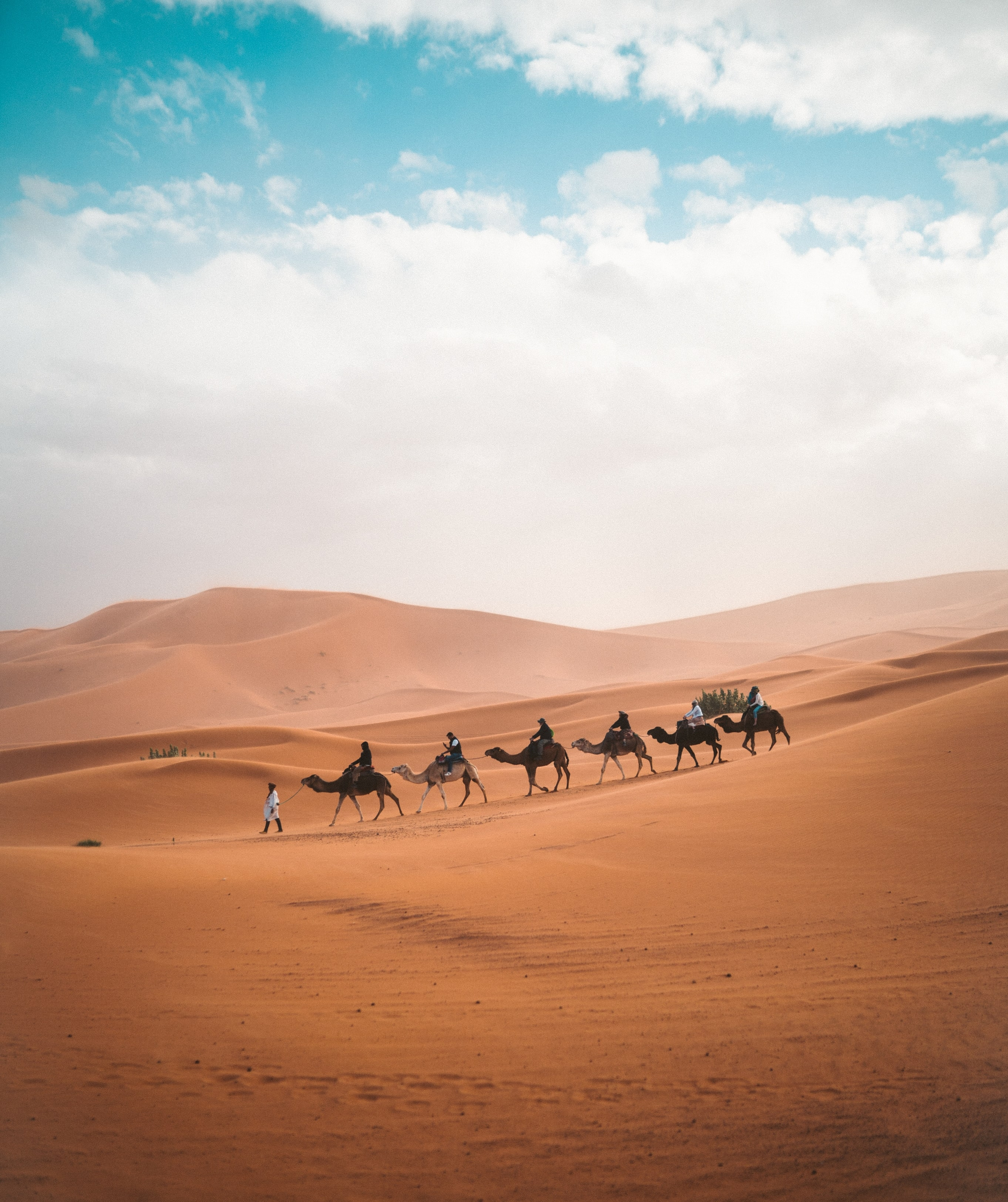 Highlights of Morocco tours