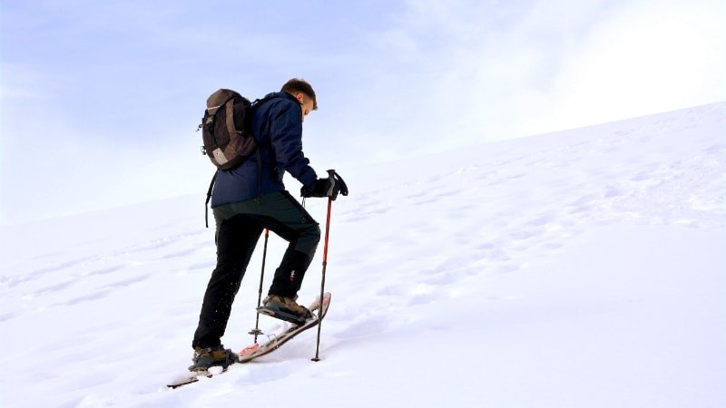 Snowshoe Hiking Private Tour