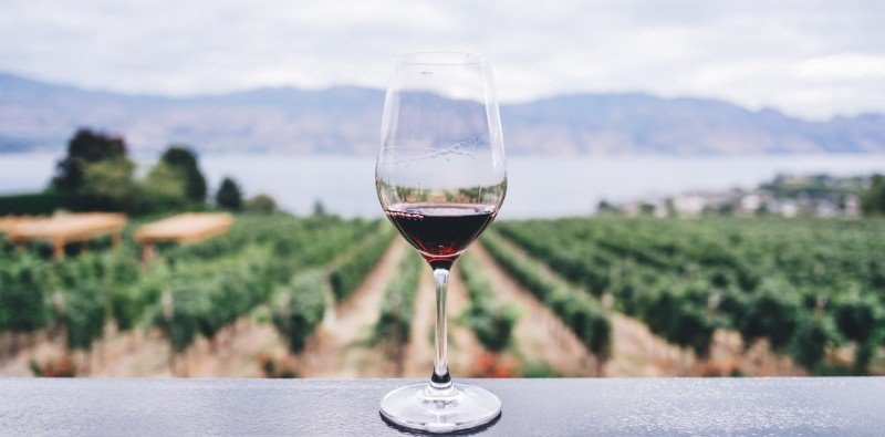 Half Day Group Wine Tour in Provence
